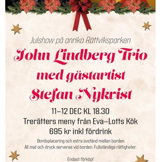 Julshow bild